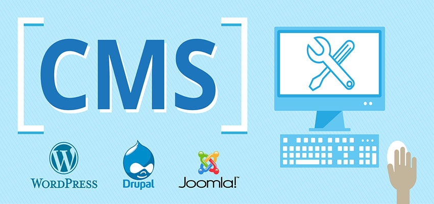 Web Design & Development With CMS