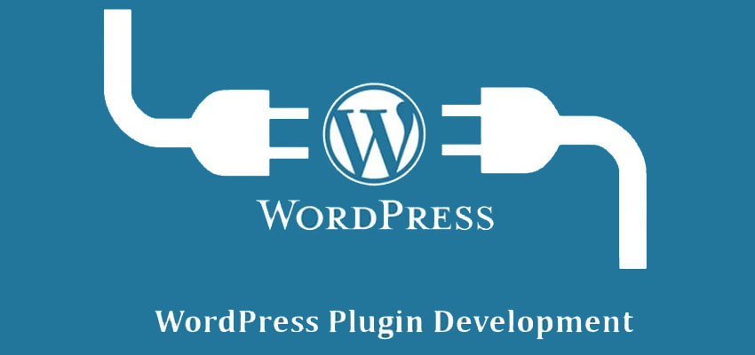 WordPress Theme Development & Plugin Customize